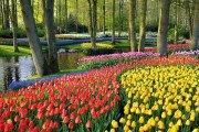 Jardins Keukenhof